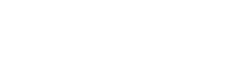 ProComm Solutions White Logo